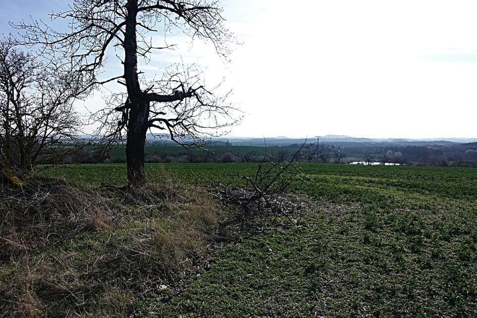 Pozemek v obci Krsy